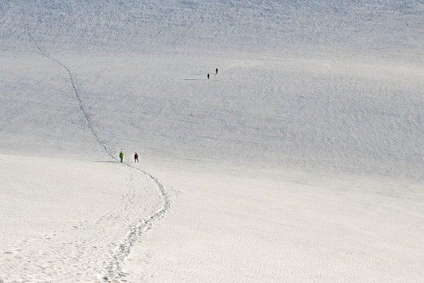 Abwege. Bergsteigen in der Schweiz | Pauli Trenkwalder, Berge & Psychologie