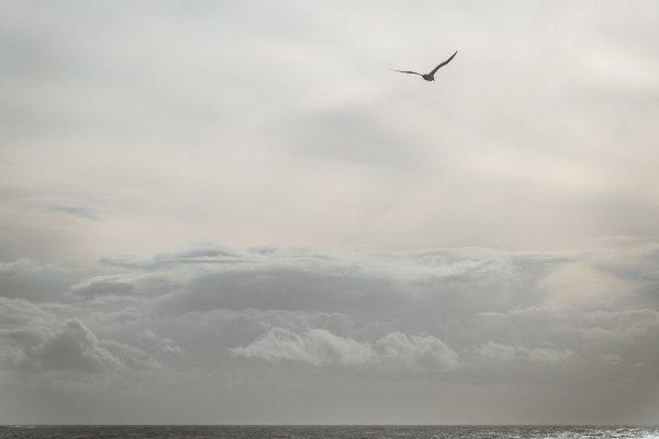 Jonathan, Wolkenband. Schottland | Pauli Trenkwalder, Berge & Psychologie