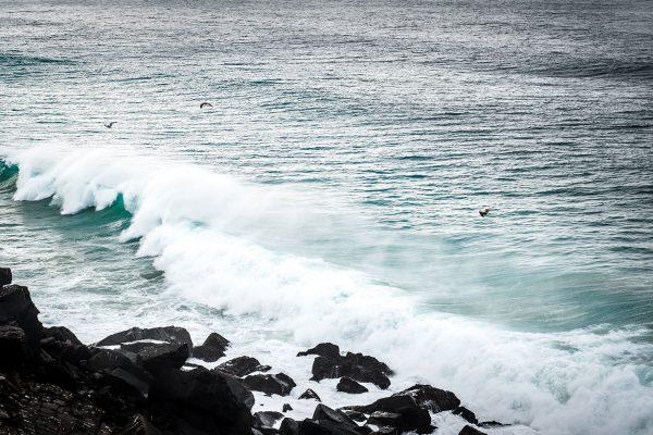 Meereswellen. Portugal | Pauli Trenkwalder, Berge & Psychologie