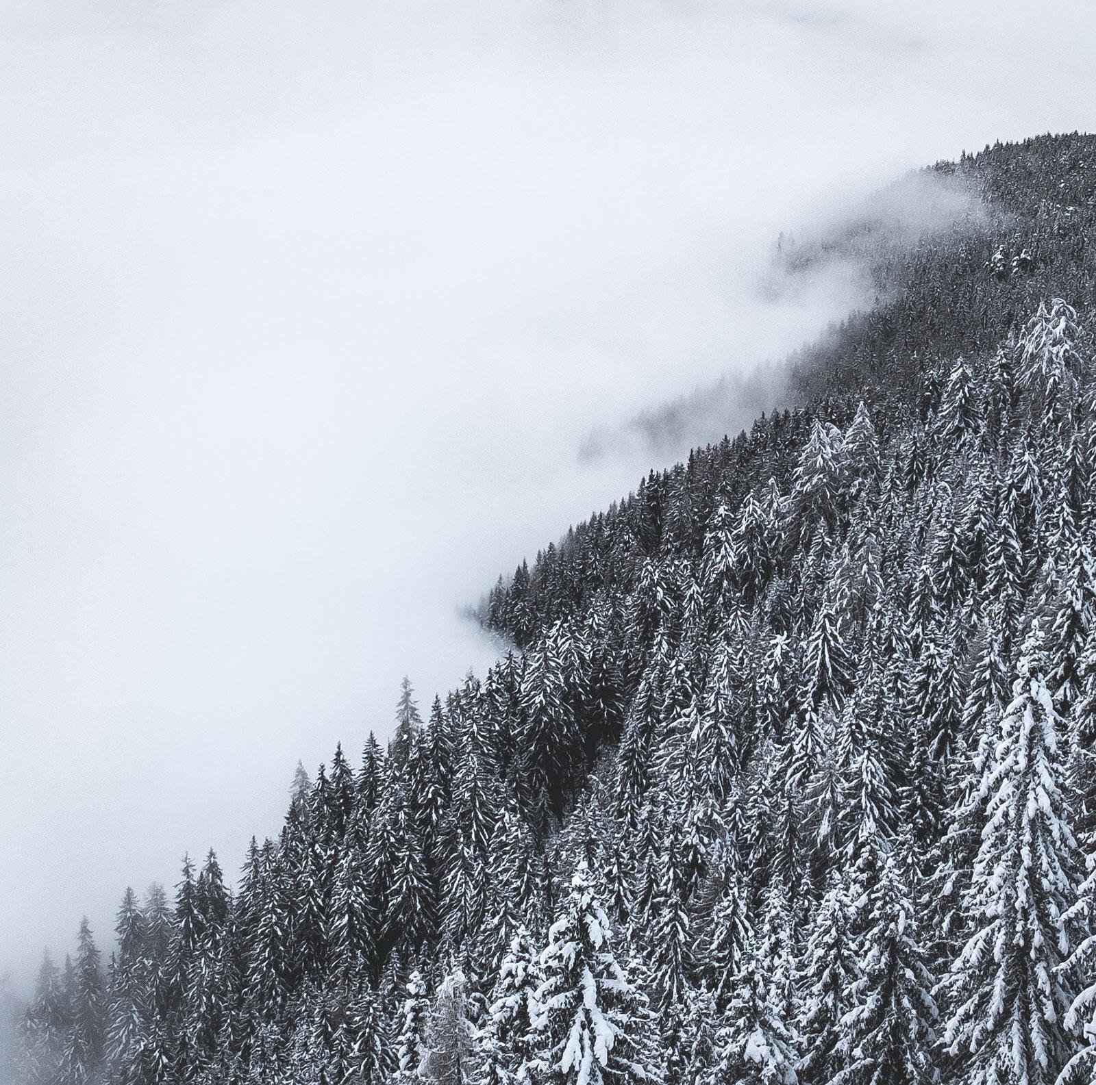 Winternebel. Südtirol | Pauli Trenkwalder, Berge & Psychologie